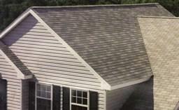 Roofing Contractor / Roof Repair