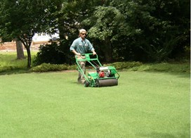 Lawn Care in Wilmington