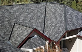 Landmark™ Special Shingles - Color: Colonial Slate