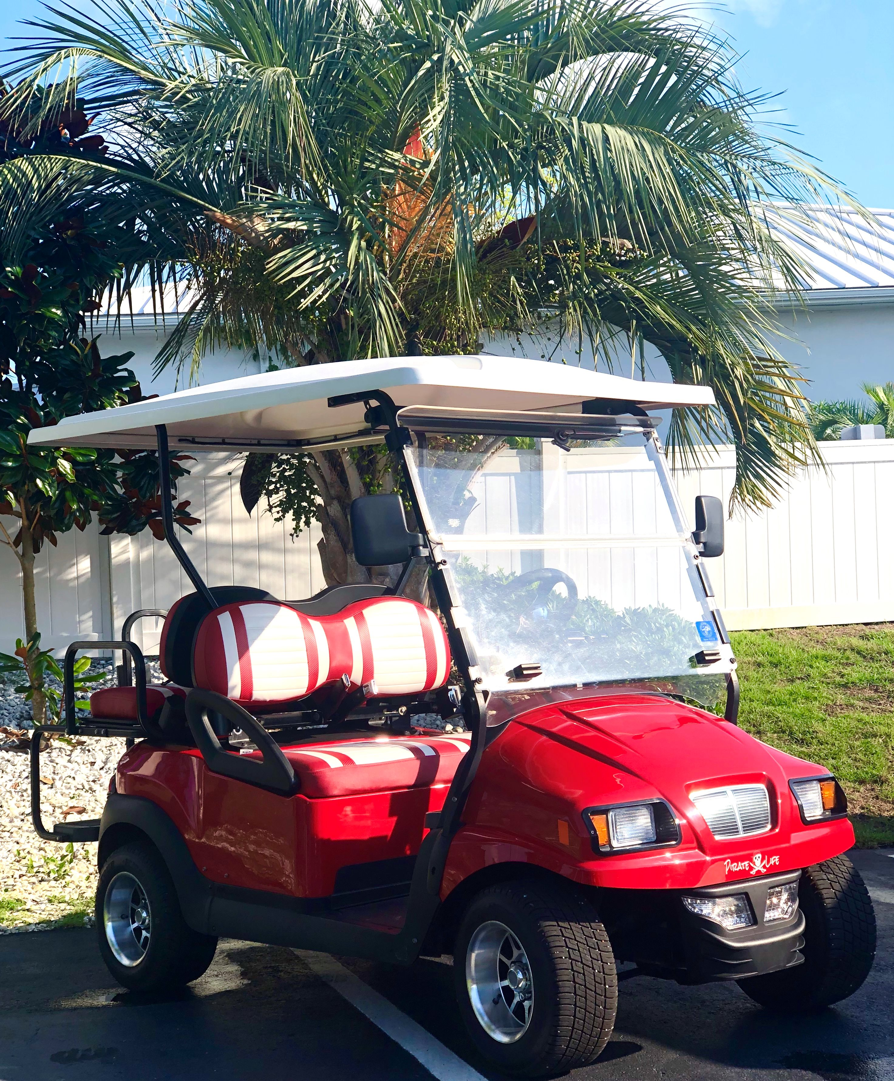 USED 2015 Club Car Precedent with Phantom Body-COMES WITH ENCLOSURE AND BEACH CHAIR RACK