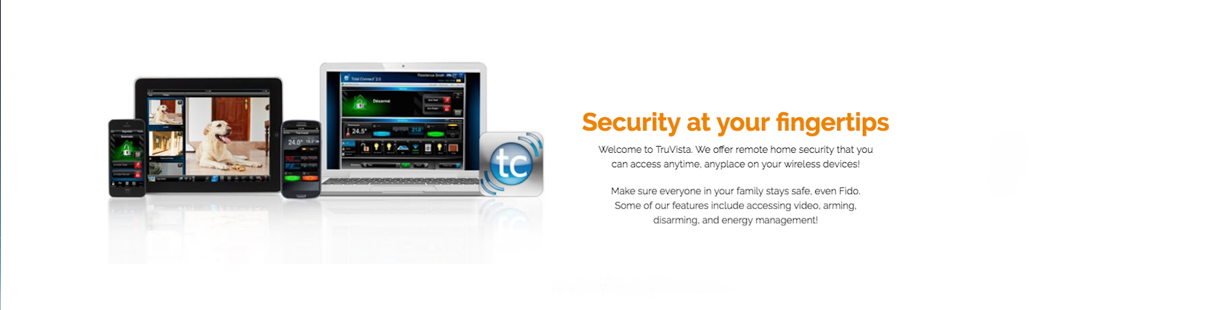 Security at your fingertips