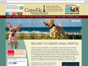 Capeside Animal Hospital - Web Design