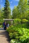 Alaska Botanical Garden - 5