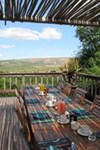 Amakhala Game Reserve - Leeuwenbosch Country House - 5