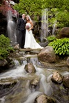 Anderson Japanese Gardens - 5