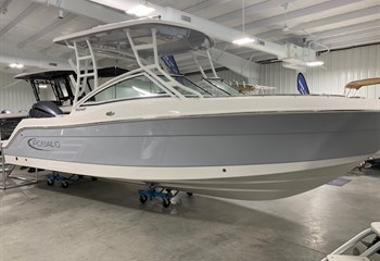 2021 Robalo R247 Alloy Gray  Boat